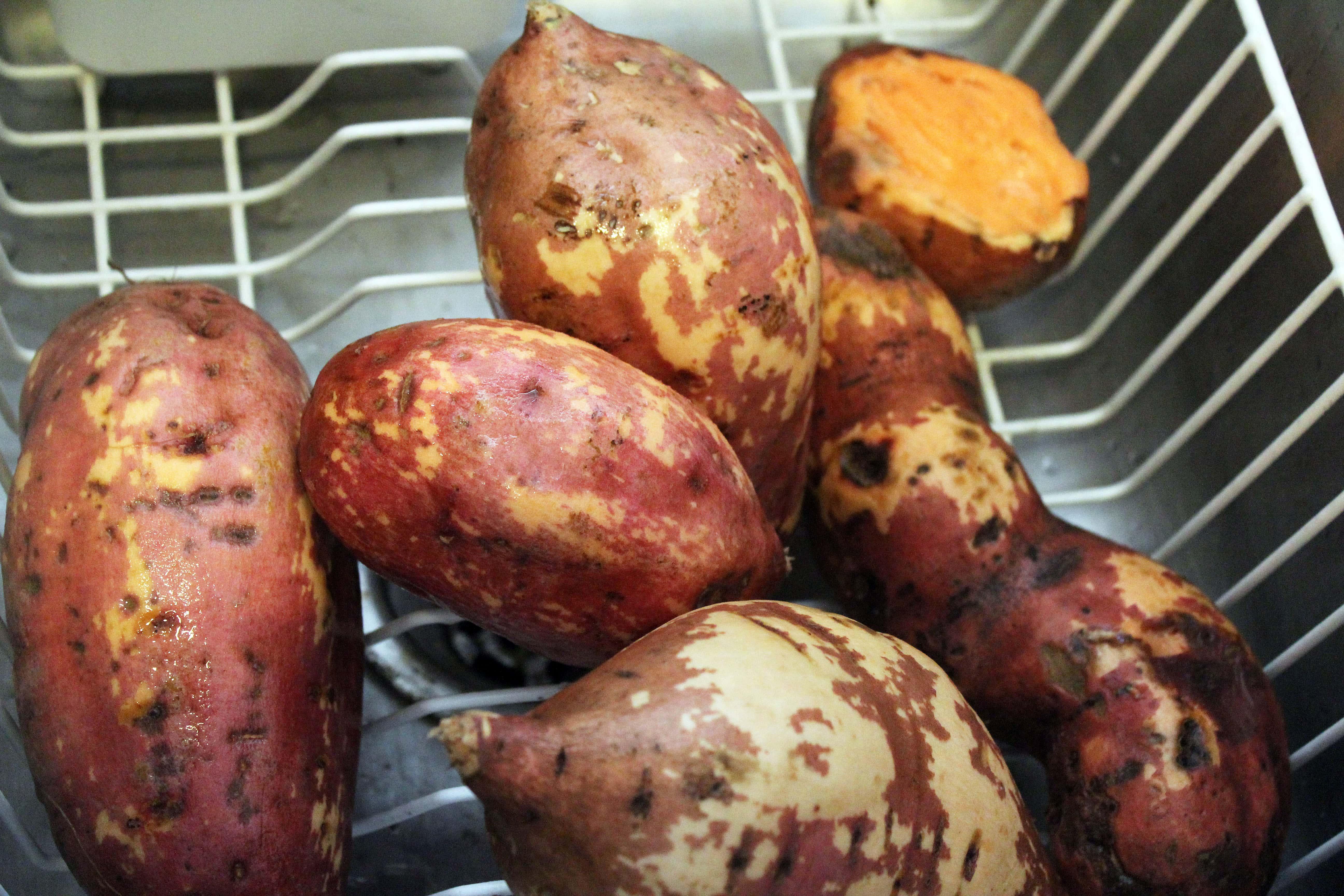scrub potatoes well