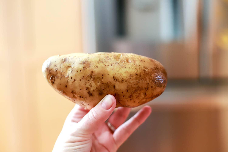 russet potato image
