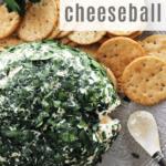 Parsley Feta Cheese Ball Image