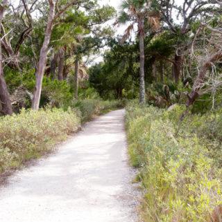 botany bay plantation