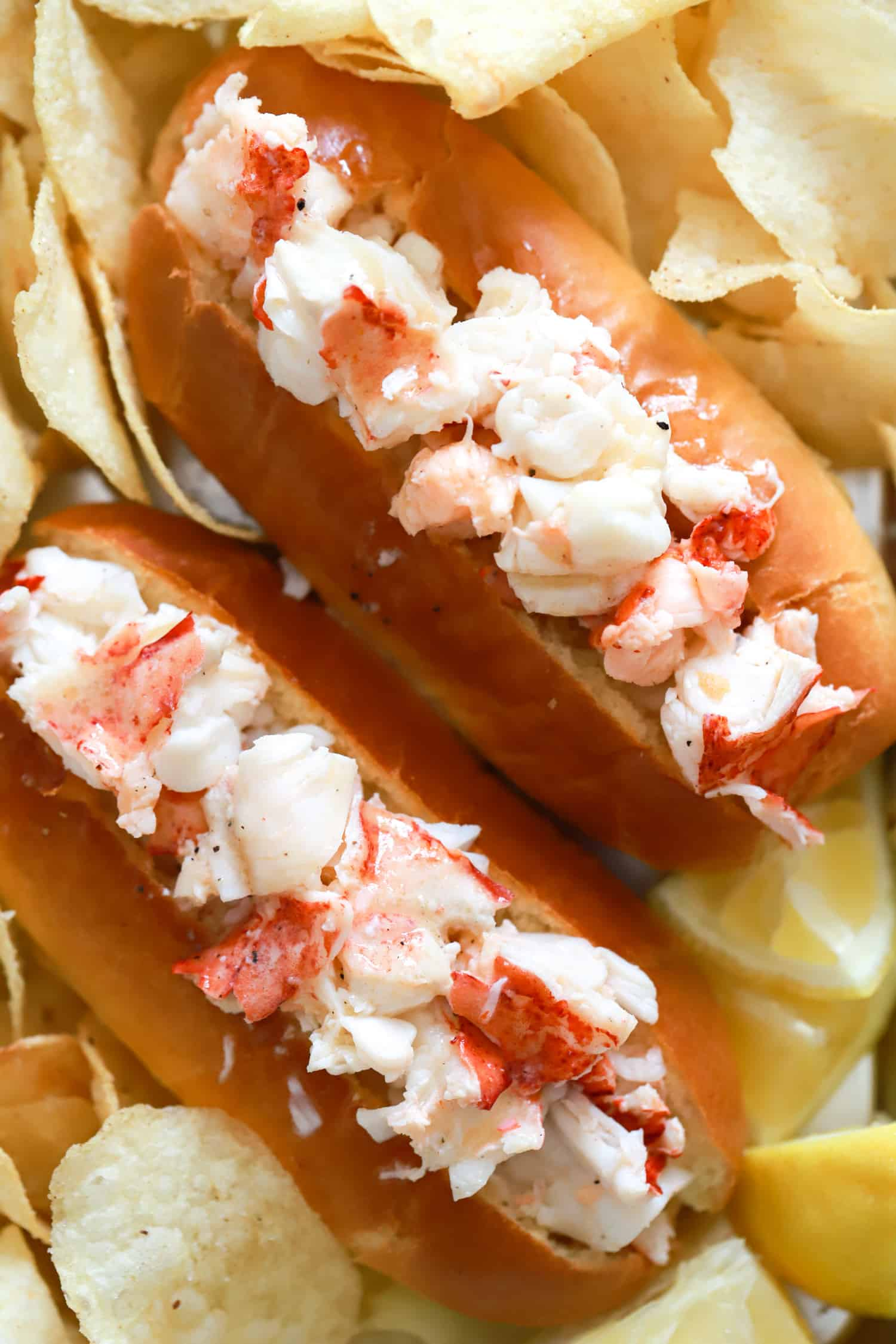close up two connecticut lobster rolls